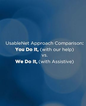 UsableNet Accessibility Approach Comparison image